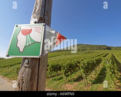 landscape with vineyards along the hiking trail the Frankish red wine route at the river Main - Stock Photo