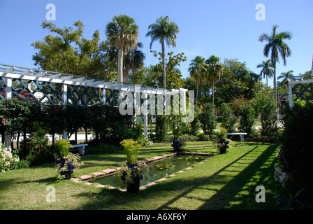 Southwest Ft Fort Meyers Myers Florida FL Minas Mina Moonlight Garden located on Edison and Ford Winter Estates - Stock Photo