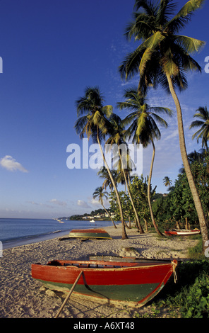 CARIBBEAN, Grenada, St. George, Boats on palm tree-lined beach - Stock Photo