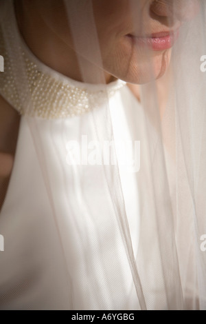 Close up of a bride under a veil - Stock Photo