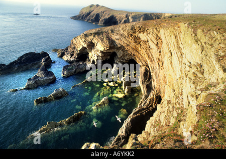 Pembrokeshire Sir Benfro is a county in the southwest of Wales in the United Kingdom. - Stock Photo