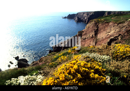 Pembrokeshire is a county in the southwest of Wales in the United Kingdom. - Stock Photo