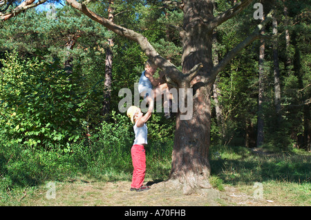 Six year old boy helping his older brother up a tree Perlacher Forest Munich Germany - Stock Photo