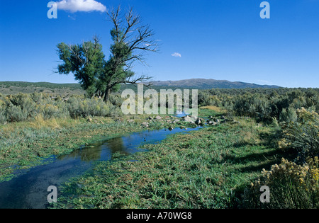 Creek at Rock Springs, historic California Trail, Nevada, USA - Stock Photo