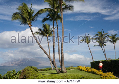 Beachfront path at Wailea on the island of Maui in the State of Hawaii USA - Stock Photo
