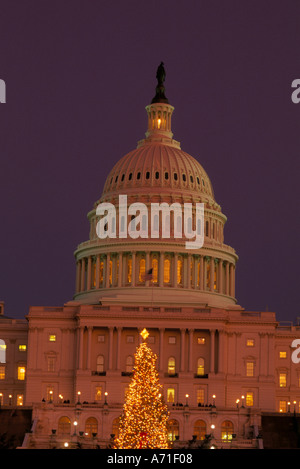 Illuminated Christmas tree in front of U Capitol in the early evening twilight Washington D C - Stock Photo