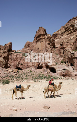 Bedouin tour guides riding camels in Petra National Park,Jordan - Stock Photo
