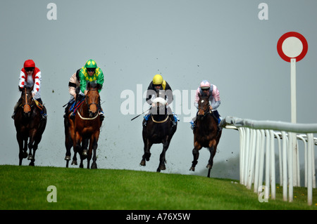 Coming up to the finishing post at Brighton races for a neck and neck result - Stock Photo