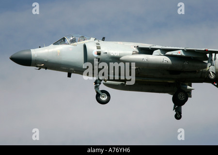 Royal Navy Sea Harrier FA2 T8 hovers with undercarriage down at RIAT 2005 RAF Fairford Gloucestershire England UK - Stock Photo