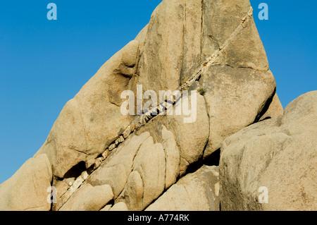 Monzogranite formations with dikes Joshua Tree National Park - California - USA - Stock Photo