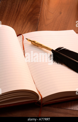 Antique quill pen on open book - Stock Photo