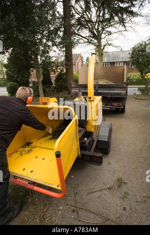 garden maintenance tree surgeon feeding branches into chopper shredding wood into small chips - Stock Photo