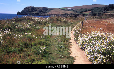 Southwest coast footpath approaching Prawle Point, south Devon, from the east - Stock Photo