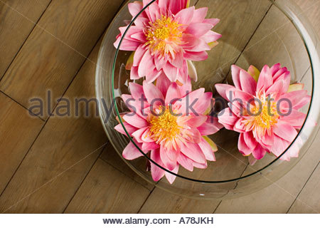 Flowers in a bowl - Stock Photo