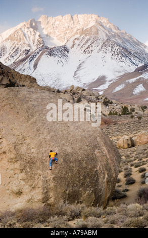 A man climbing on the Peabody Boulders in the Buttermilks near Bishop California - Stock Photo