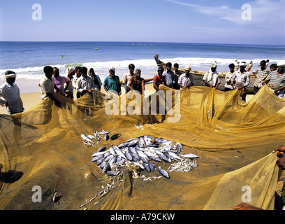 Fishermen with catch on beach Varkala Kerala India - Stock Photo
