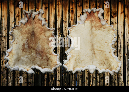 Drying a reindeer skin - Stock Photo