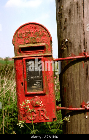 Cheshire Bollington Old Post Box on telegraph pole - Stock Photo