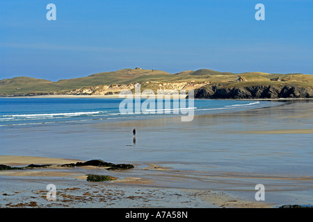 Solitary person wading through wash in Balnakeil Bay near Durness in Sutherland Scotland with Faraid Head behind - Stock Photo