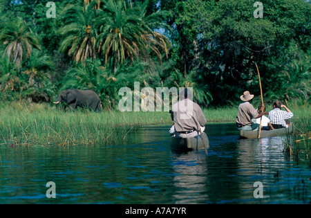 Tourists viewing elephants from in dugout canoes on the waters of the Okavango Delta Okavango swamps Botswana - Stock Photo