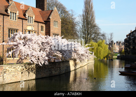 Magdalene College in spring, Cambridge, England. - Stock Photo