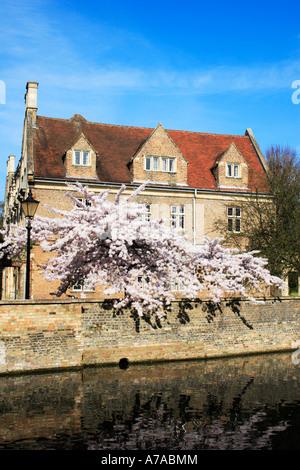 Part of Magdalene College, Cambridge, England. - Stock Photo