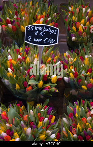 Flower market in central Amsterdam - Stock Photo