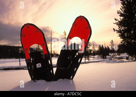 Snowshoes in the snow along the Firehole River in Yellowstone National Park Wyoming - Stock Photo