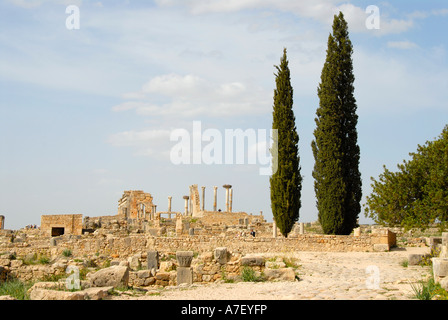 Archaeological excavation of antique Roman city Volubilis Morocco - Stock Photo