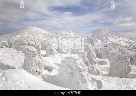 Snow Monsters - Trees with snow frozen on to them in winter Mount Hakkoda Japan - Stock Photo