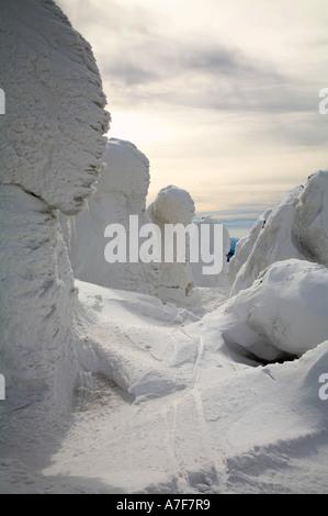 Snow monsters ice covered ski tracks trees hakkoda mountain aomori tohoku japan winter travel - Stock Photo