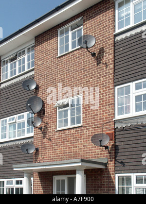 Hampshire part of a block of flats with satellite television aerials on walls beside windows - Stock Photo