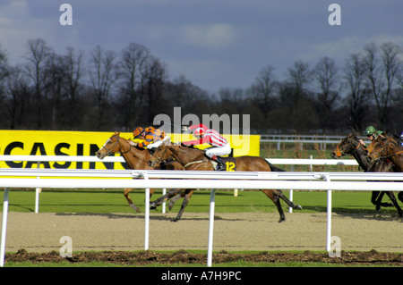 Fantaisiste in red Golden Dixie in orange horse racing on the all weather track at Kempton Park - Stock Photo