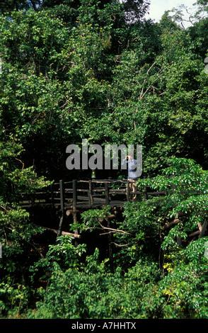 Birdwatching from the walkway around Shimba Lodge, Shimba Hills National Park, Kenya - Stock Photo