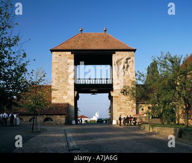 Deutsches Weintor, Stadttor, Schweigen-Rechtenbach, Deutsche Weinstrasse, Naturpark Pfaelzerwald, Rheinland-Pfalz - Stock Photo