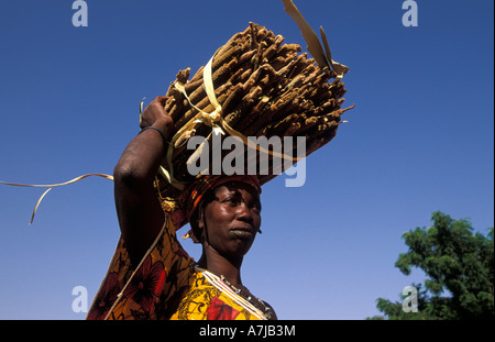 Woman carrying millet, Songo, Dogon Country, Mali - Stock Photo