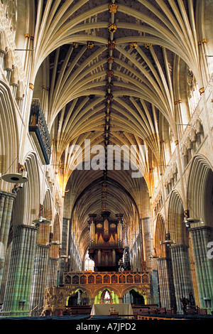 The interior of Exeter Cathedral showing the Gothic vaulted ceiling the Pulpitum Screen and the large pipe organ - Stock Photo