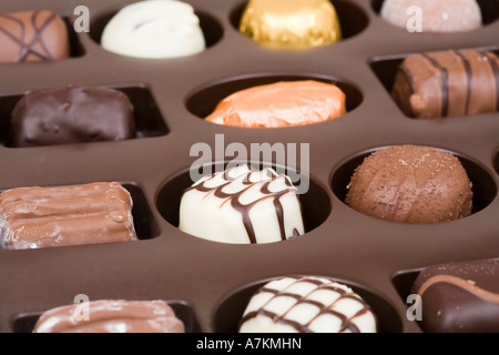 Chocolate tray with assorted Belgian chocolates - Stock Photo