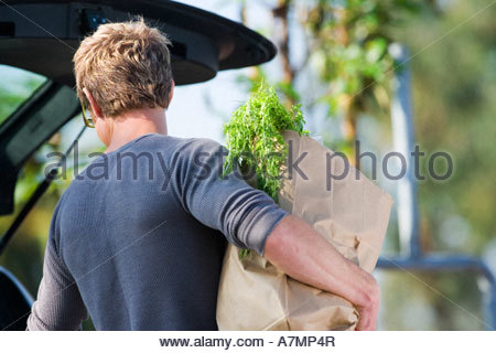 Man loading groceries into car boot in supermarket car park rear view - Stock Photo