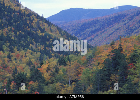 North America, US, NH, Fall Foliage in the notch.  White Mountain N.F. - Stock Photo