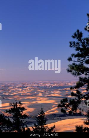 NA, USA, Eastern Washington, Palouse county, farmland hills from Kamiak Butte - Stock Photo
