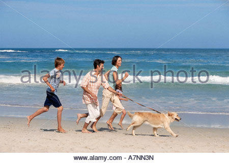 Two generation family taking dog for walk on sandy beach running and smiling sea in background - Stock Photo