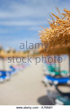 Palapa sunshades and sunloungers on sandy beach focus on foreground - Stock Photo