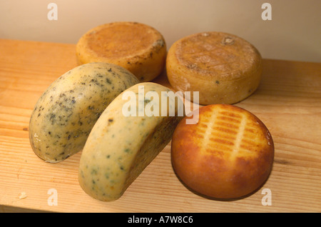 Production of Teifi Farmhouse Cheese Teifi Near Carmarthen West Wales HJ - Stock Photo