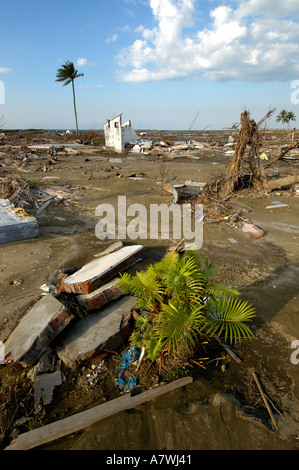 Indonesia Sumatra Banda Aceh Post Tsunami Devastated Ulee Lhe neighbourhood - Stock Photo