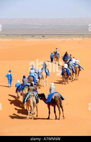 Group of tourists rides on camels through sand Erg Chebbi Merzouga Morocco - Stock Photo