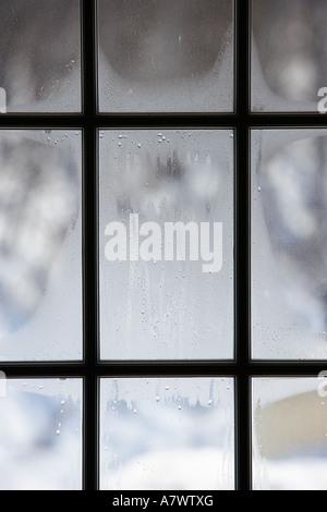 Winter scene viewed through a multi-pane window - Stock Photo