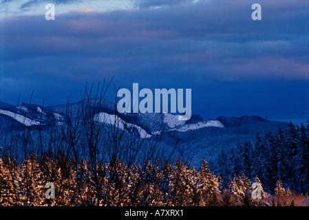 Fresh snow on Chuckanut Ridge, Bellingham, Washington, USA - Stock Photo