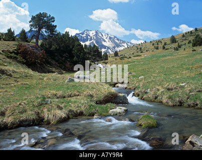 MOUNTAINOUS LANDSCAPE above Vall de Soldeu with snow-capped El Cubil mountain beyond. Envalira Soldeu Andorra - Stock Photo