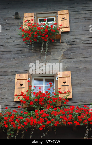 Switzerland, Zermatt, chalet with flowers - Stock Photo